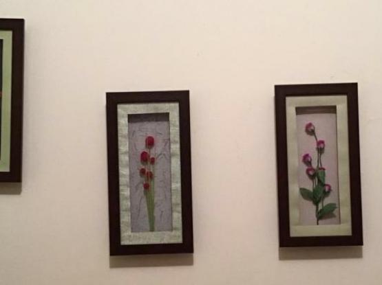 4 decorative frames