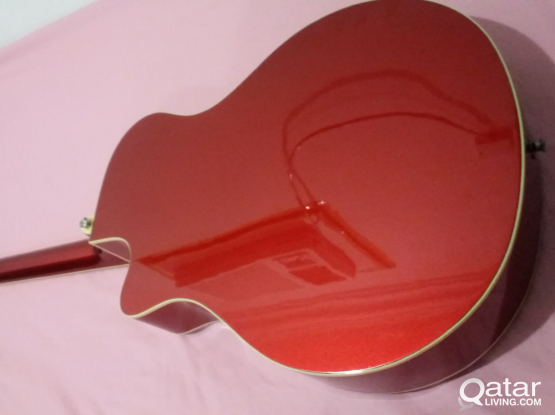 Yamaha APXii Acoustic/Electric