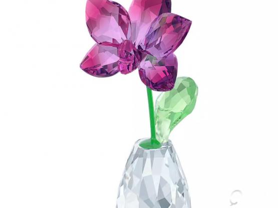 Swarovski Orchid  ( Happy Flower Theme)
