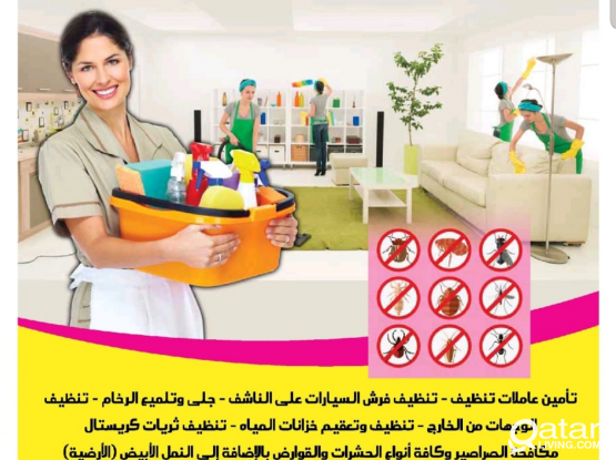 Philipino Lady Cleaners