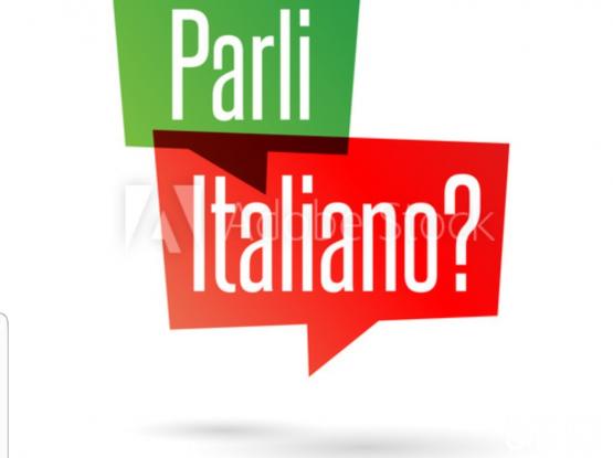 professional italian teacher .