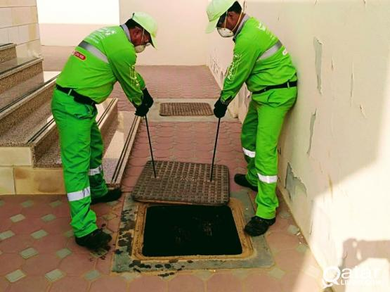 German pest control service In Doha 44414910
