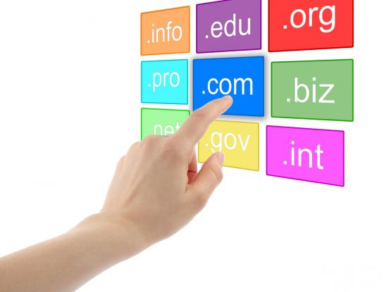 Business Emails (Domain name and Hosting) - 66524222