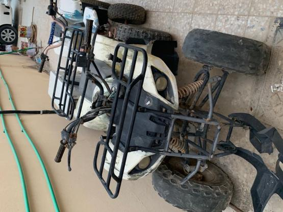 Buggy Z Force 2000