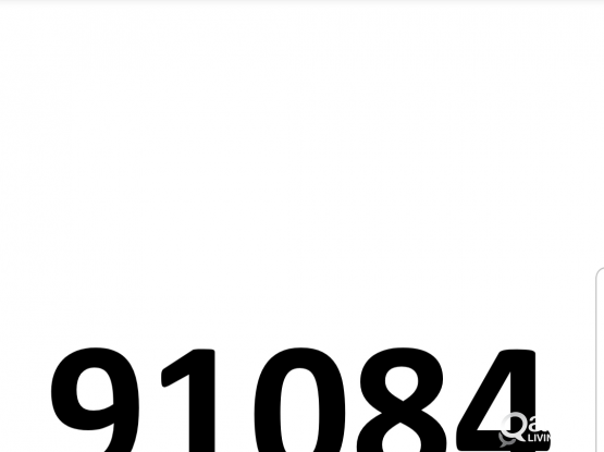 91084  =  Special Number