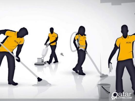Looking for a cleaning company