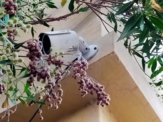 4way CCTV camera with DVR
