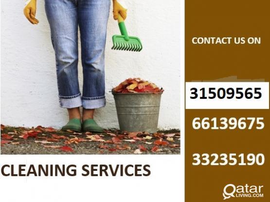 CLEANERS,HELPERS ETC 33235190