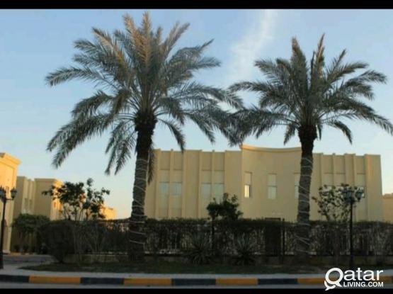 SF Big  villa-Gharrafa,direct from owner 1 month free