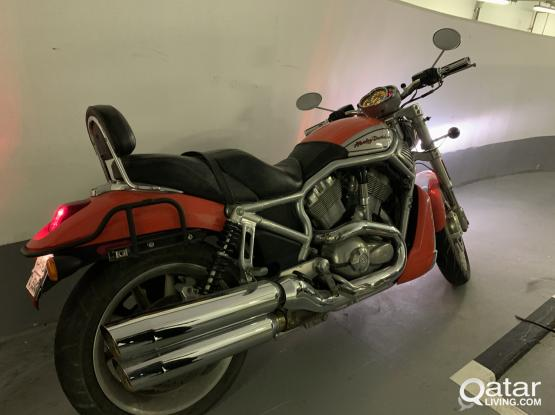 Harley Davidson V-Road 2006