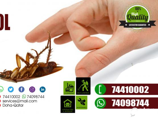 Call On 74098744 Pest control at Affordable price