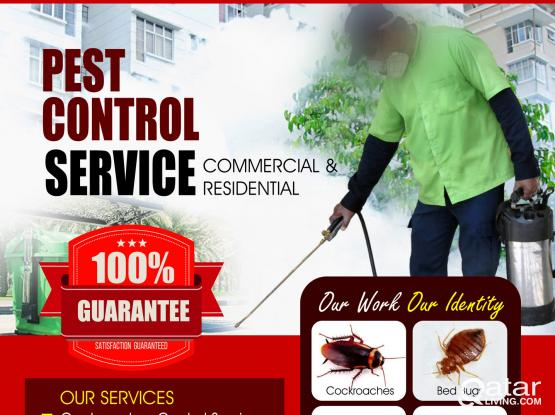 Pest Control Service at Affordable Price - Call On +97474410002