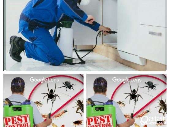 Pest control services. Call 50673146