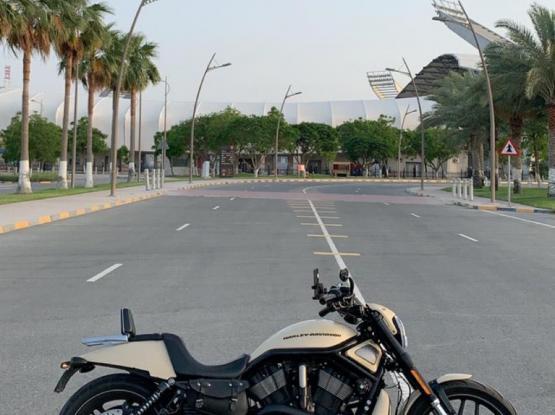 Harley Davidson Night Rod 2014