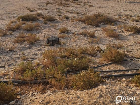 land for rent in barkathawamir