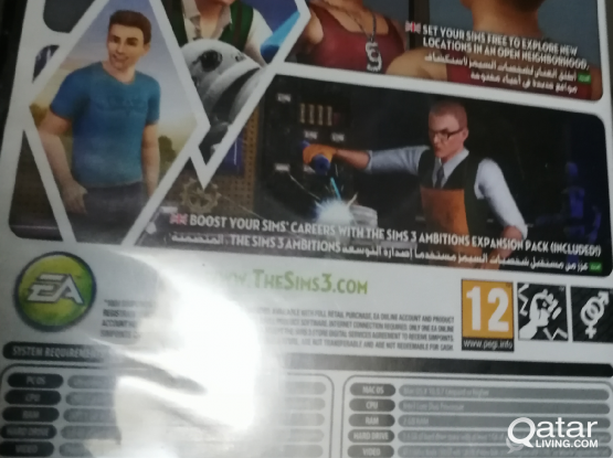 Sims 3 computer game