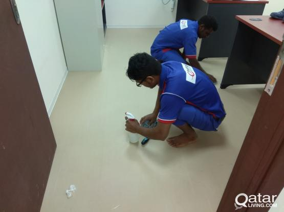 BUILDING DEEP CLEANING