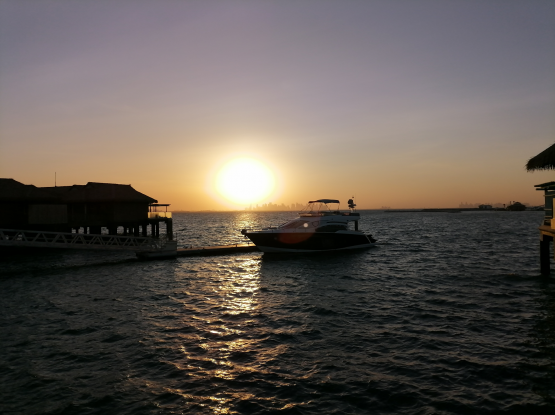 Special offer 4 hours boat trip only 1250 riyals