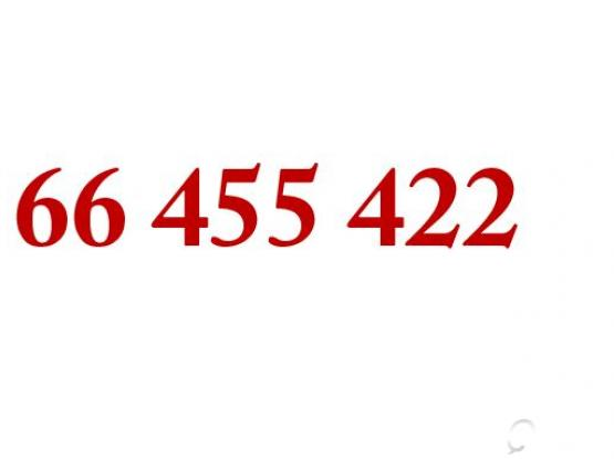 Easy to remember number for sale 66 455 422