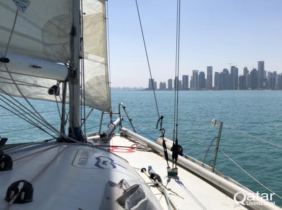 Pogo 1 - Mini Transat 6.50 sailing boat