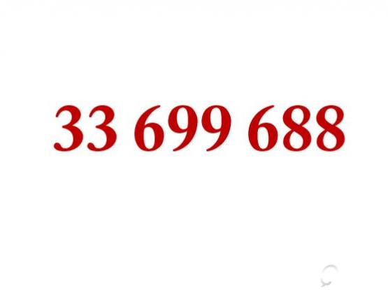 Special Number for Sale 33699688