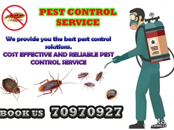 Excellent pest control services in Qatar. Call/whatsapp 70970927