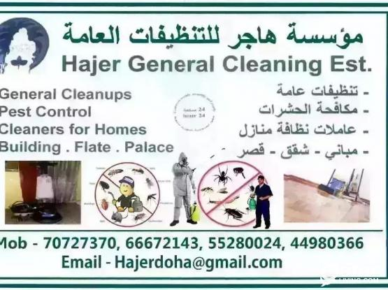 Cleaning And Pest Control