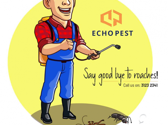 Pest control services And Bacterial Disinfectant