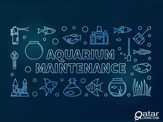 fish tank cleaning $ Maintenance