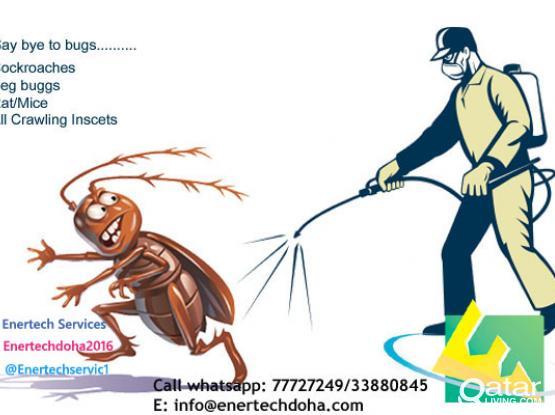 sanitization & pest control services - Um-salal/Al Kheesa
