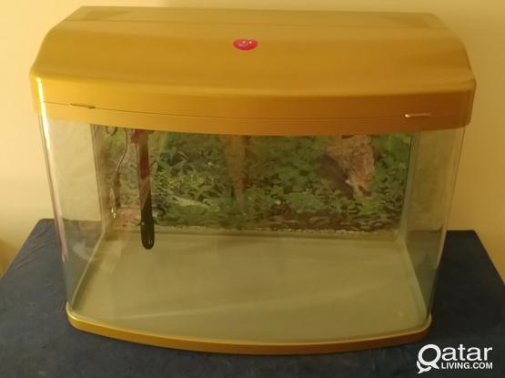 Fish tank with filter and LED light for sale