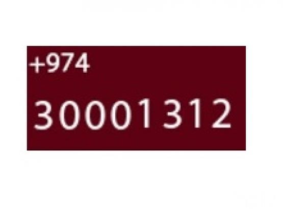 VIP OOREDOO Number 30001312