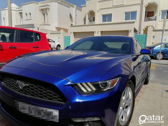 Ford Mustang Ecoboost 2015