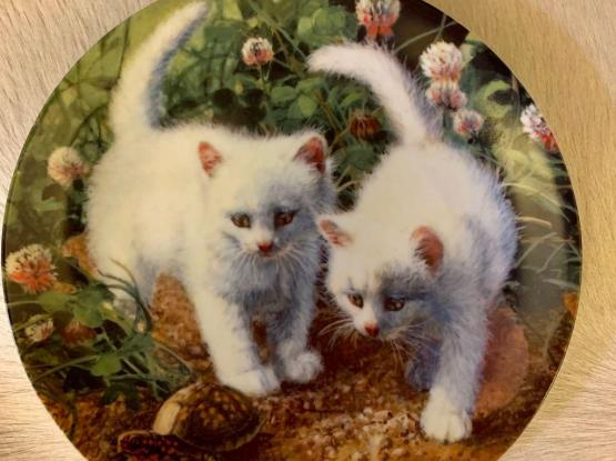 Super Cute 1st Issue kittens Collector Plate