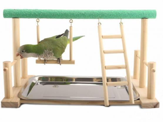 Bird Stand (Wooden Perch)