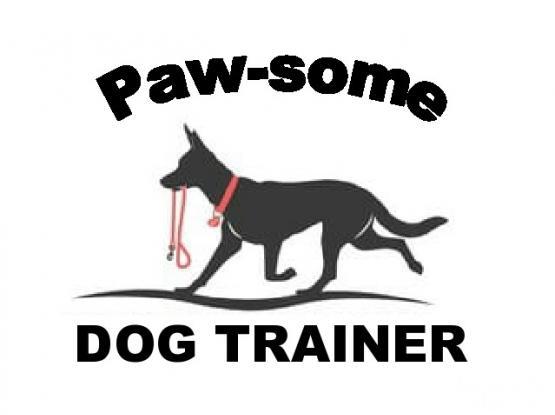 Certified German Dog Trainer