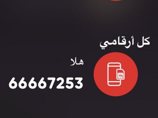 66667253