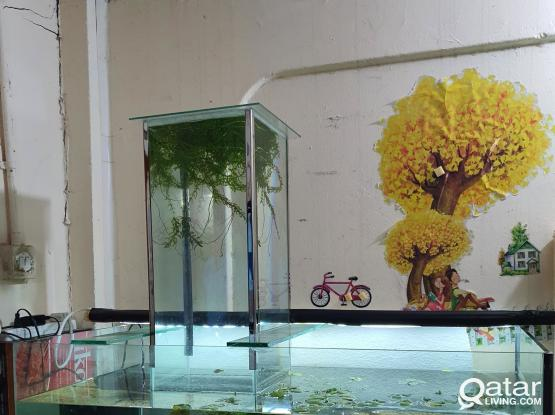 Magic aquarium with 25 fish