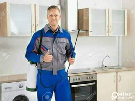 50% off Cleaning and pest control services