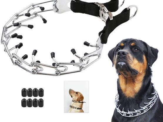 Dog Training Prong-Collar