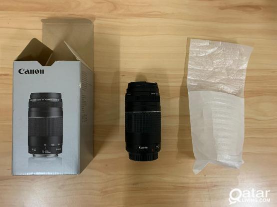 Canon EF 75-300mm f/4-5.6 III Zoom Lens