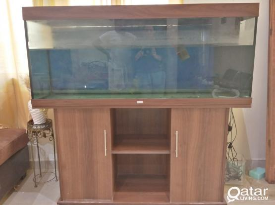FISH TANK(JUWEL) FOR SALE