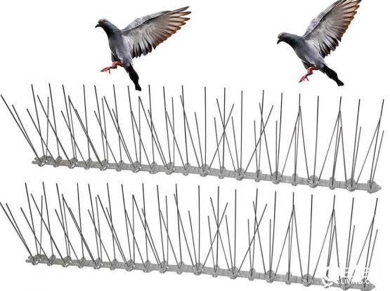 BIRD SPIKE # BIRD NET # BIRD GEL