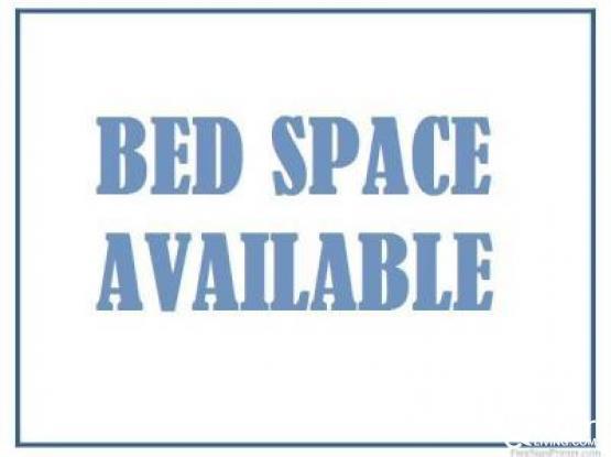 Bedspace Mansoura