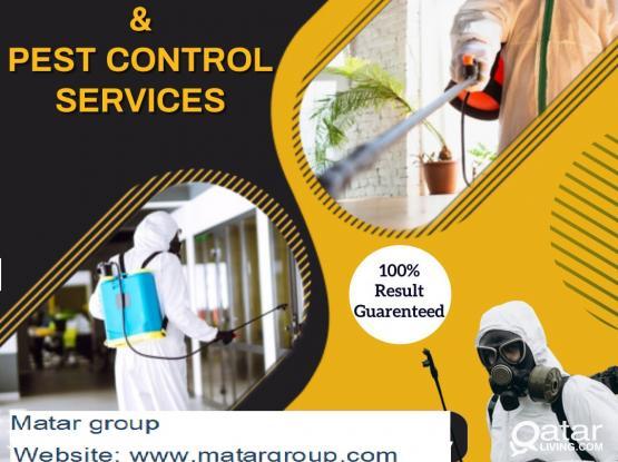 pest control -74099479