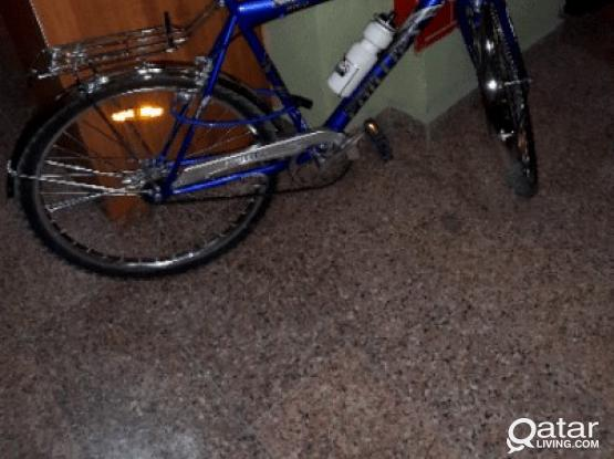 PHILLIPS 1-MONTH OLD BICYCLE FOR SALE