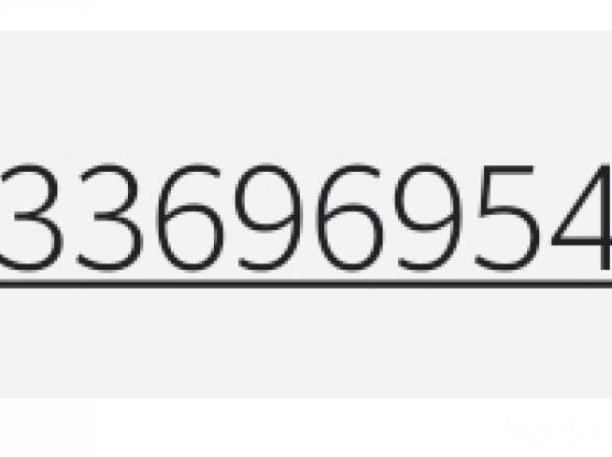 33696954