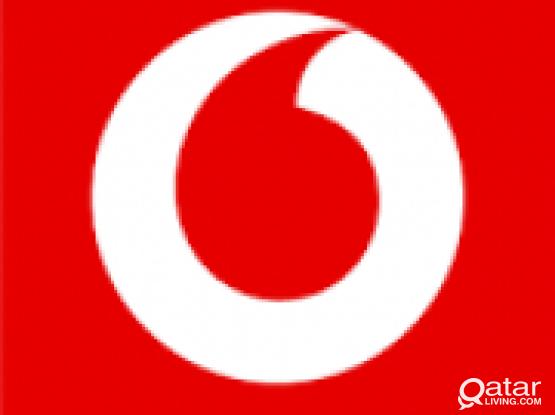 Vodafone Mobile Number 30 25 44 99