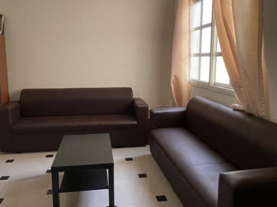 Rexine Sofa Looks Like Leather Sofa