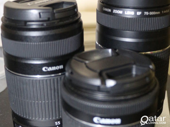 Canon 18-55mm, 75-300mm and 55-250mm lens